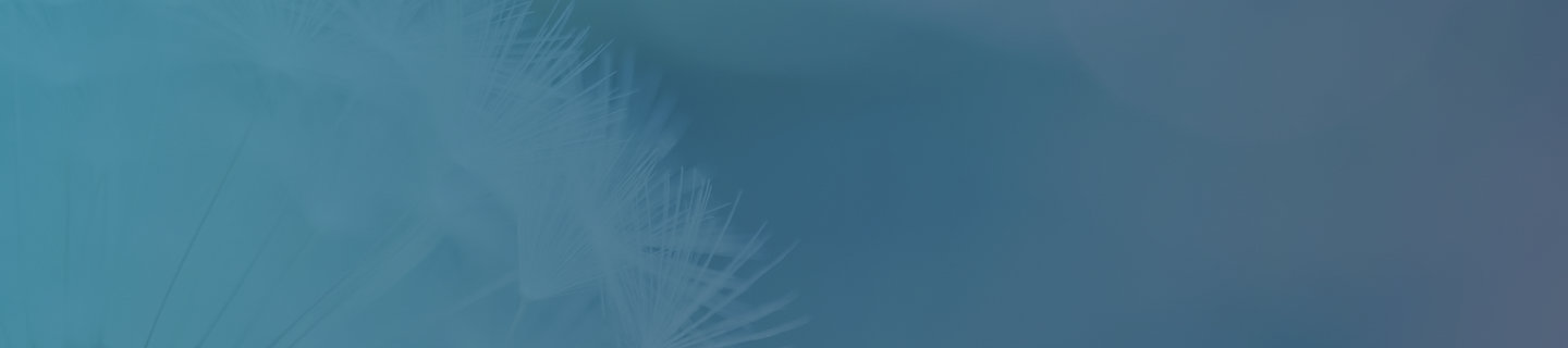 Teal banner with dandelion